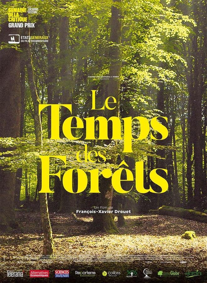 SEANCE RENCONTRE :  LE TEMPS DES FORETS